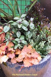 Wordless Wednesday Container Garden Season Open