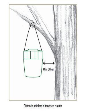 Colocación Trampa captura Procesionaria