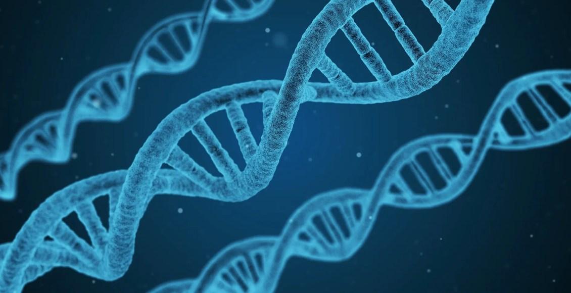 Bioquímica de la metilación del ADN | El Paso, TX Quiropráctico