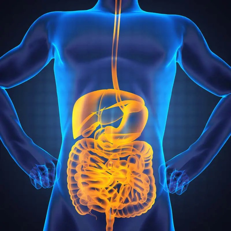 The Microbiome Functions and Functional Medicine Part: 1 El Paso, Texas