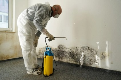 Cleaning-mold-in-the-house