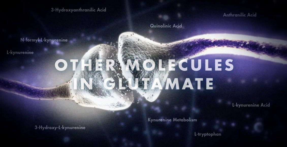 Neurología funcional: otras moléculas en glutamato | El Paso, TX Quiropráctico