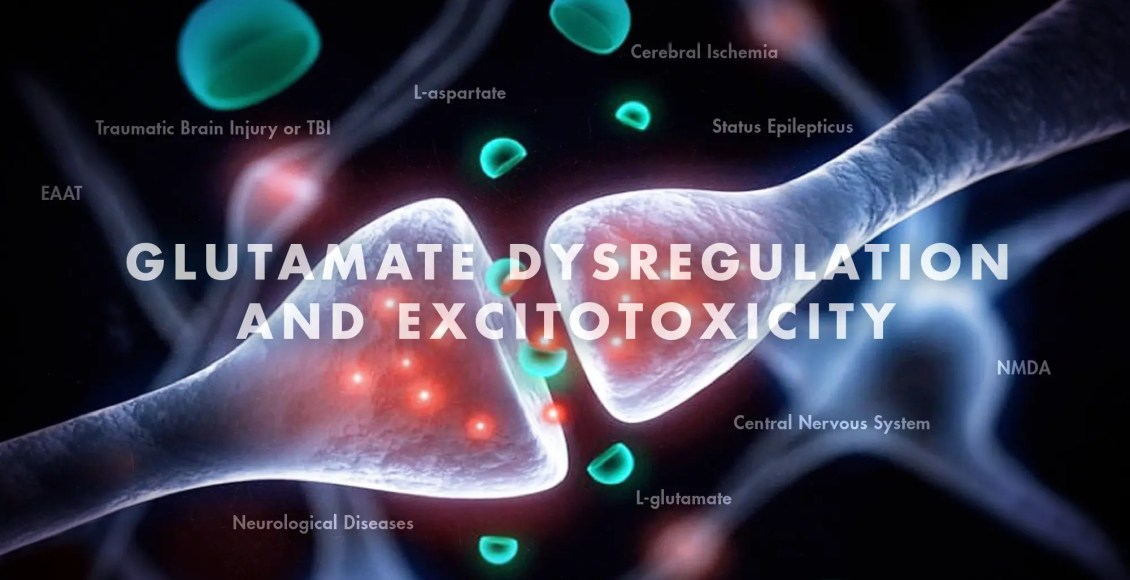 Functional Neurology: Glutamate Dysregulation and Excitotoxicity | El Paso, TX Chiropractor