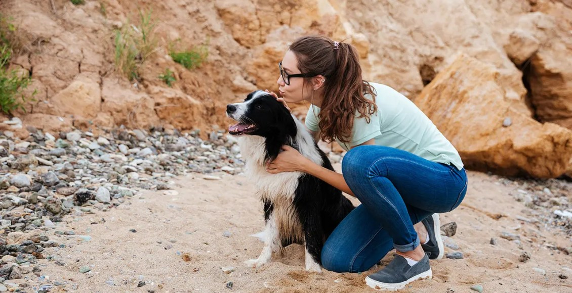 11860 Vista Del Sol, Ste. 128 Pets Healing Power Can Be Powerful Medicine