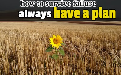 How to Survive Failure: Always Have a Plan