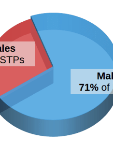 Istps by gender pie chart make up of all personality types also istp type craftsman profile max rh personalitymax