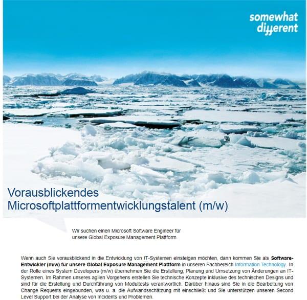 Stellenanzeigen - Ein Bild sagt mehr als 1000 Worte - oder auch nicht - Screenshot Hannover Re/Monster