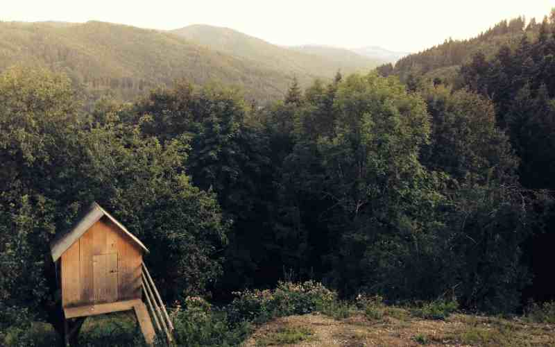 How to Get Off the Grid