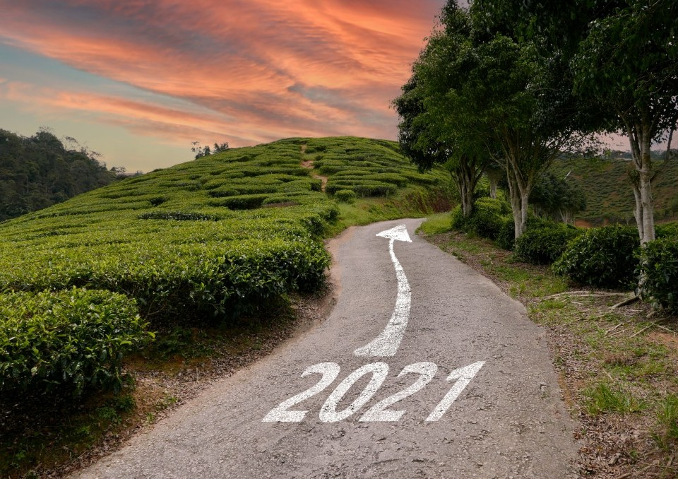Will Tradelines Boost My Credit in 2021