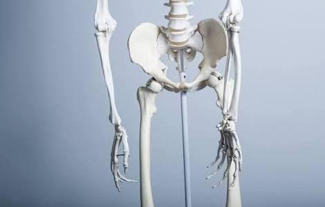 骨盤が歪む原因の筋バランス調整方法!