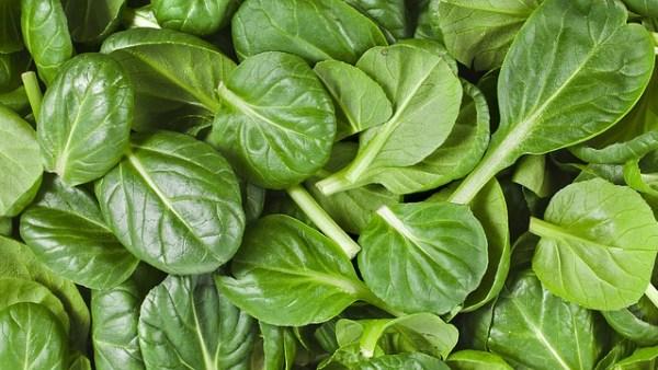 Aubergine-spinazie ovenschotel met ei en feta