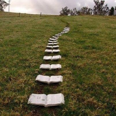 strada di libri - tratta da Internet