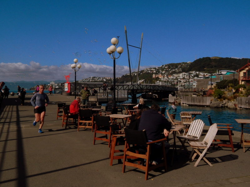 Porto di Wellington