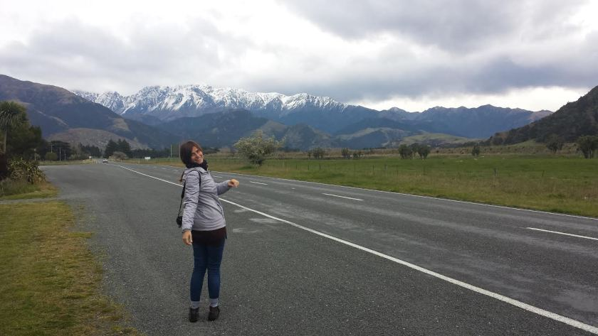 Itinerario in Nuova Zelanda: la strada fra Blenheim e Kaikoura