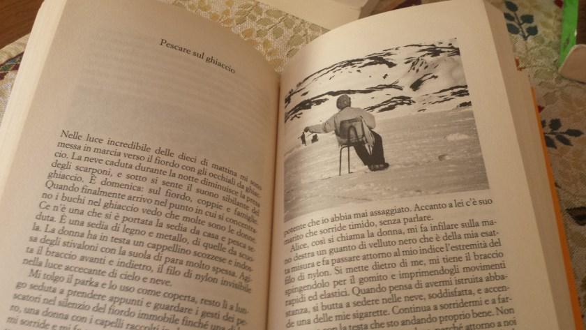 Libri di viaggio: Nel bianco di Simona Vinci