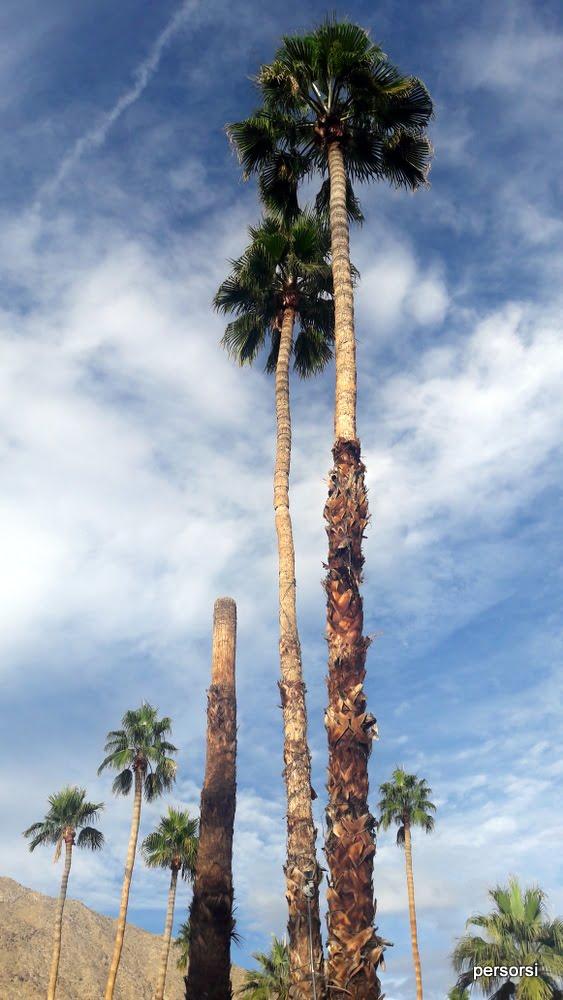 California a dicembre: cieli azzurri
