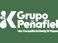 logo-grupo-peñafiel