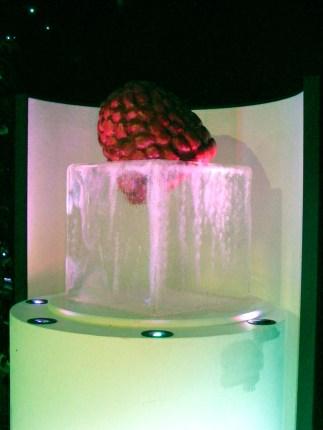 Perspex display Ice Cube