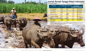 Grafik Jumlah Rumah Tangga Petani Indonesia
