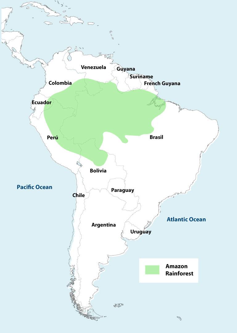 Amazon Rainforest World Map : amazon, rainforest, world, Amazon, Rainforest, Explorer