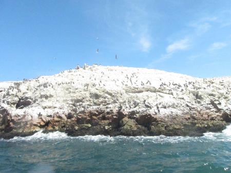 Bitsmag - Ilhas Ballestas