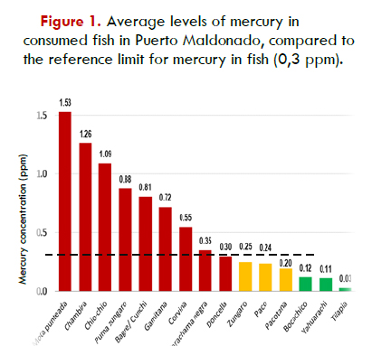Mercury levels of 9 of the 15 most consumed fish species had average levels of mercury above the international mercury reference limit (0.3 ppm)
