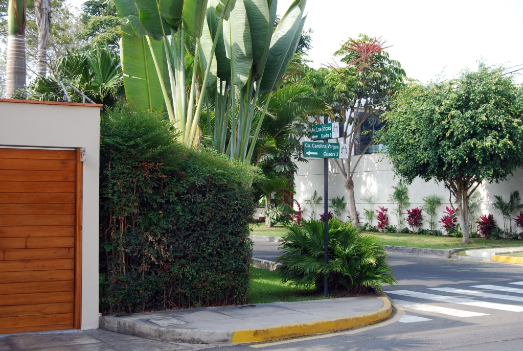 A street near the small-group home where my American father was a resident from late 2011 to 2012; run by a geriatrician, the home had 20 patients, most of them with dementia. Photo by Jorge Vera, 2014.