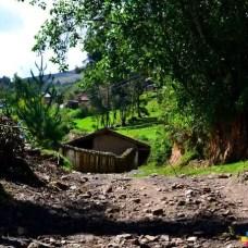 Camino de ida a Patarcocha