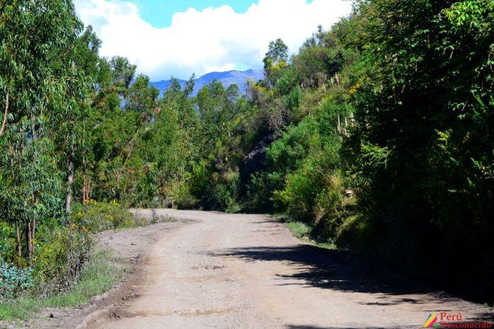 Carretera San Luis Yauya