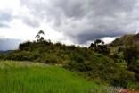 Restos arqueológicos de Cashajirca en San Luis