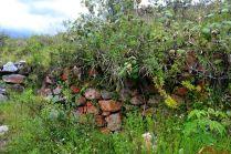 Restos arqueológicos de Cashajirca Ancash