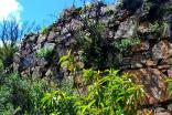 Muros de piedras