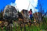Pórtico de inmensas piedras.