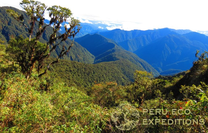 Luxury Peru Travel - AdrenaLuxe Amazon & Andes Expedition