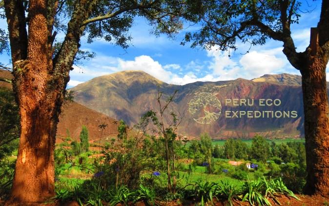 Hacienda Huayoccari Scenic View