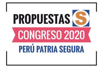 Propuestas Perú Patria Segura