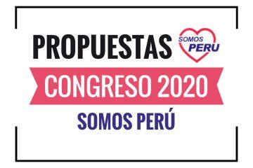 Propuestas de Somos Perú