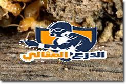 أفضل شركة مكافحة الدفان بعنيزة شركة رش دفان بعنيزة شركة رش دفان بعنيزة 0555260478 images 47