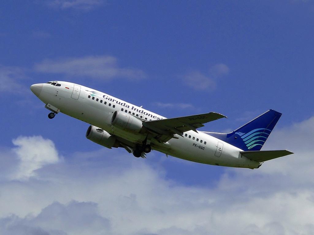 Picture  Pesawat Terbang