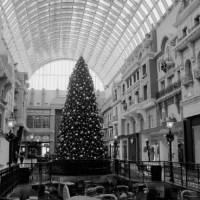 Dulce Navidad por Yolanda Erre Blanco