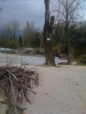 Vernasso (a monte del ponte) Inizio zona RP1 (Aprile 2013)