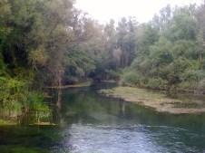 Fiume Ghebo - Lonca di Codroipo - Settembre 2013