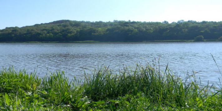 lacul stejeris