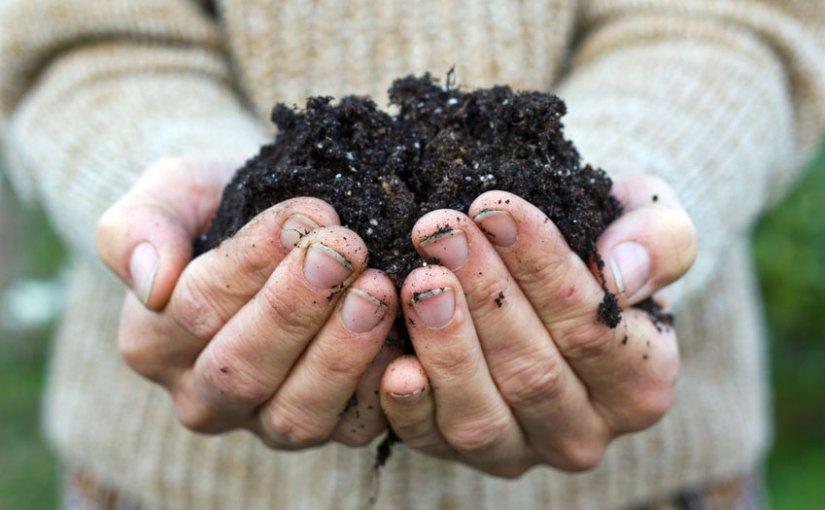 Distribution gratuite de compost 100% subiéreux samedi 6 avril 8h30-12h30