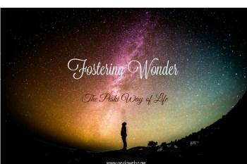 Fostering Wonder
