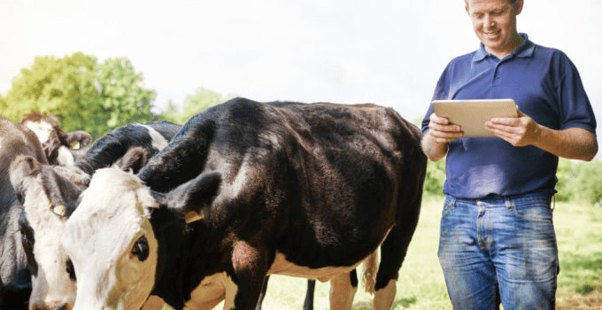 Farm Insurance: Complete Guide to Farm Insurance Policy