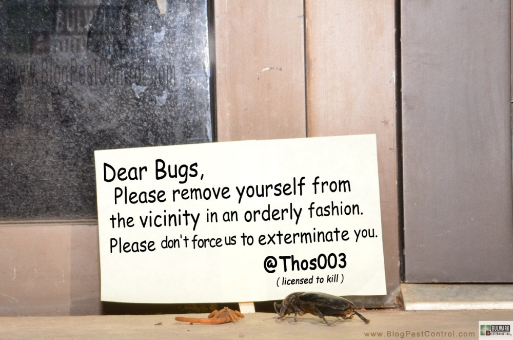 Holistic Pest Control - #Joke (2/2)