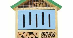 Beneficial Bug House