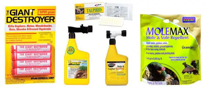 Top 5 Mole Control Products