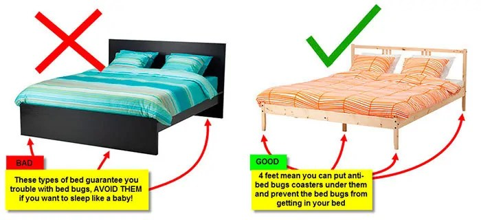 Bad and Good for Your Bed